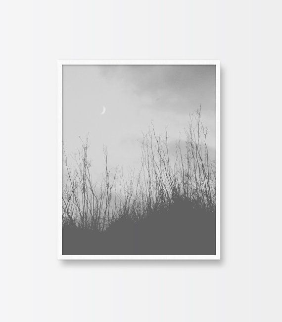 Wall Art Print Black And White Photography Minimalist Printable Art Plants Nature Landscape Clouds With Images Wall Art Prints Printable Art Wall Decor Printables
