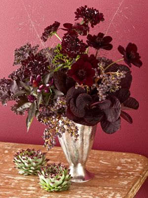 love the wine colour combo in arrangement, Chocolate cosmos, cotinus, Scabiosa