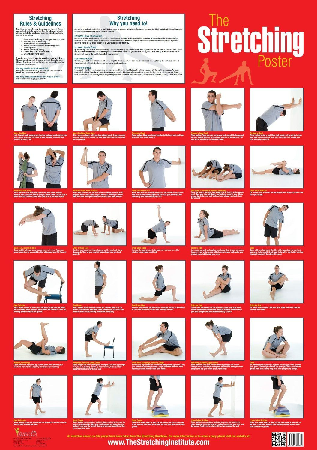 The Stretching Poster Sports & Outdoors