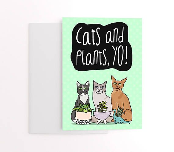 Cats And Plants Yo Cat Themed Greetings Card For Friend