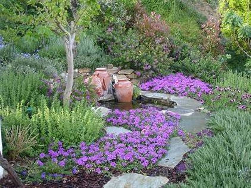 Garden And Lawn , Great Mediterranean Garden Plants : Mediterranean Garden  Plants With Pond