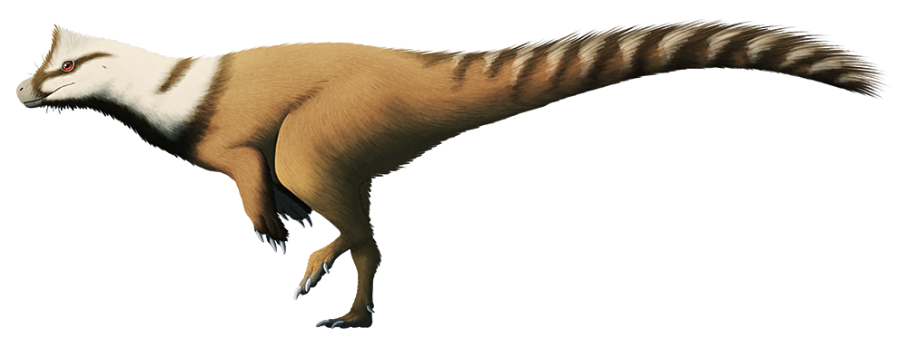 Feathered Herrerasaurusone Of The Earliest Known Dinosaurs