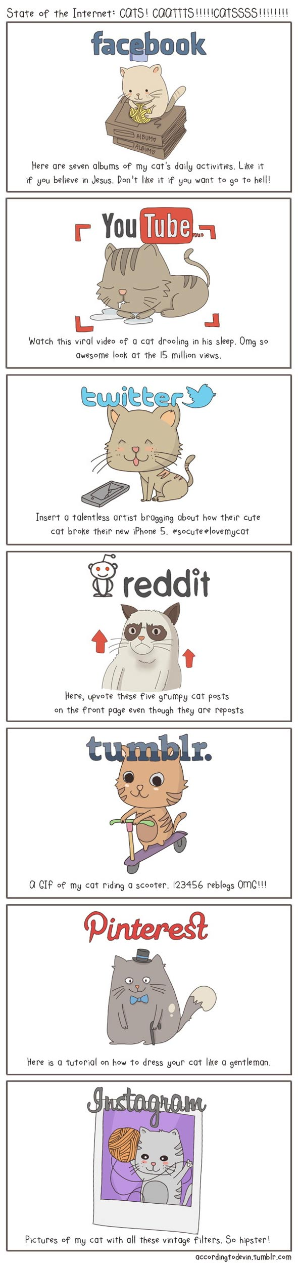 The State Of The Internet, Explained With Cats » Geeky Fun