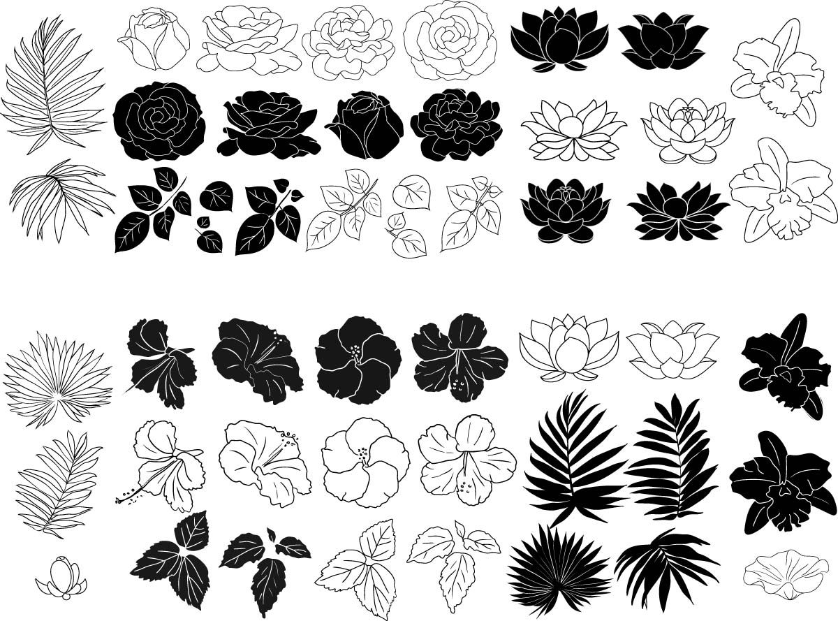 Roses, hibiscus and lotus floral elements set vector