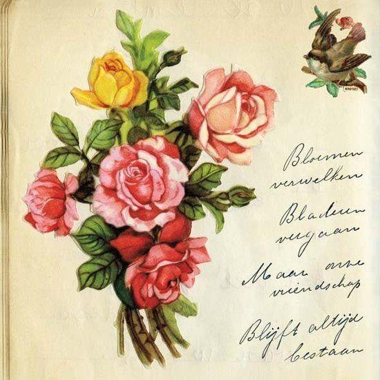 Poster Bosje Rozen poesiealbum - Gevonden geluk! - De Oude Speelkamer