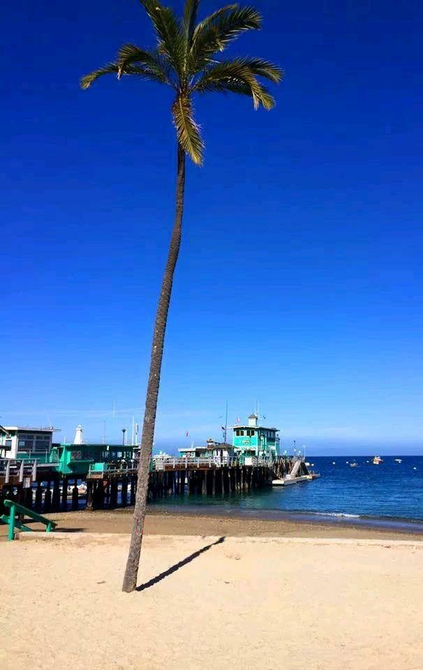 Catalina Island, 2019. Catalina island, Island, Outdoor