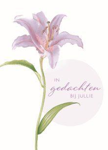 In gedachte bij jullie! #Hallmark #HallmarkNL #bloem #condoleance… |  Rouwkaart, Condoleances, Kaarten
