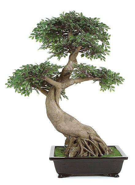 fake bonsai tree elm bonsai artificial 30 w. Black Bedroom Furniture Sets. Home Design Ideas