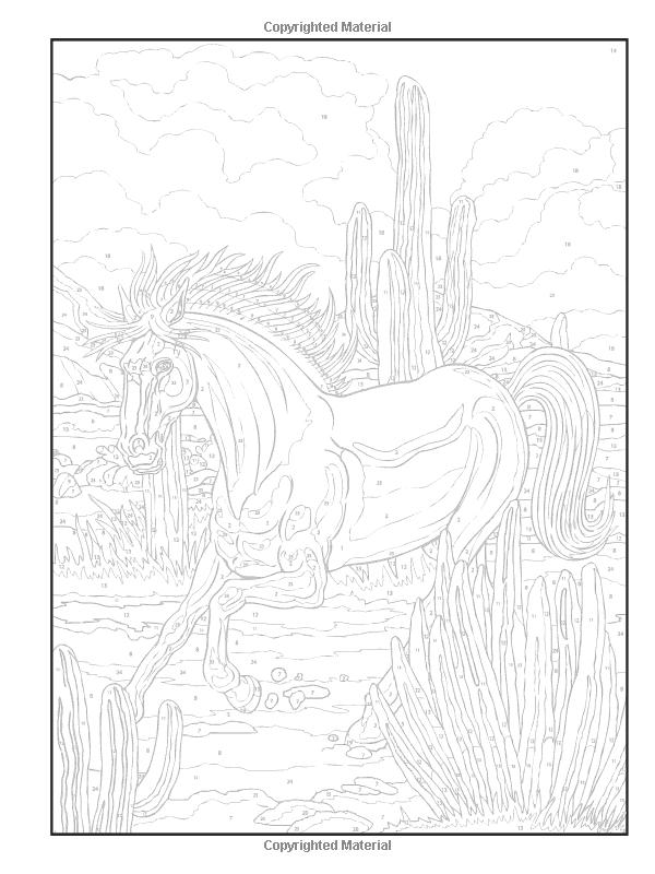 Dover Publications on Amazon / Creative Haven Horses Color