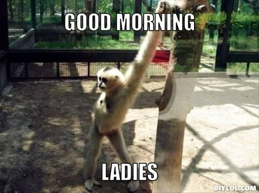 Good Morning Meme To Him : Funny good morning memes ladies art and