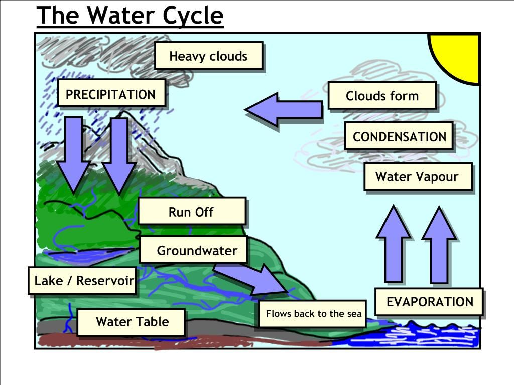 water cycle diagram - Google Search