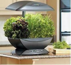 Aerogarden Indoor Garden Kit Indoor Farming Herbs 640 x 480