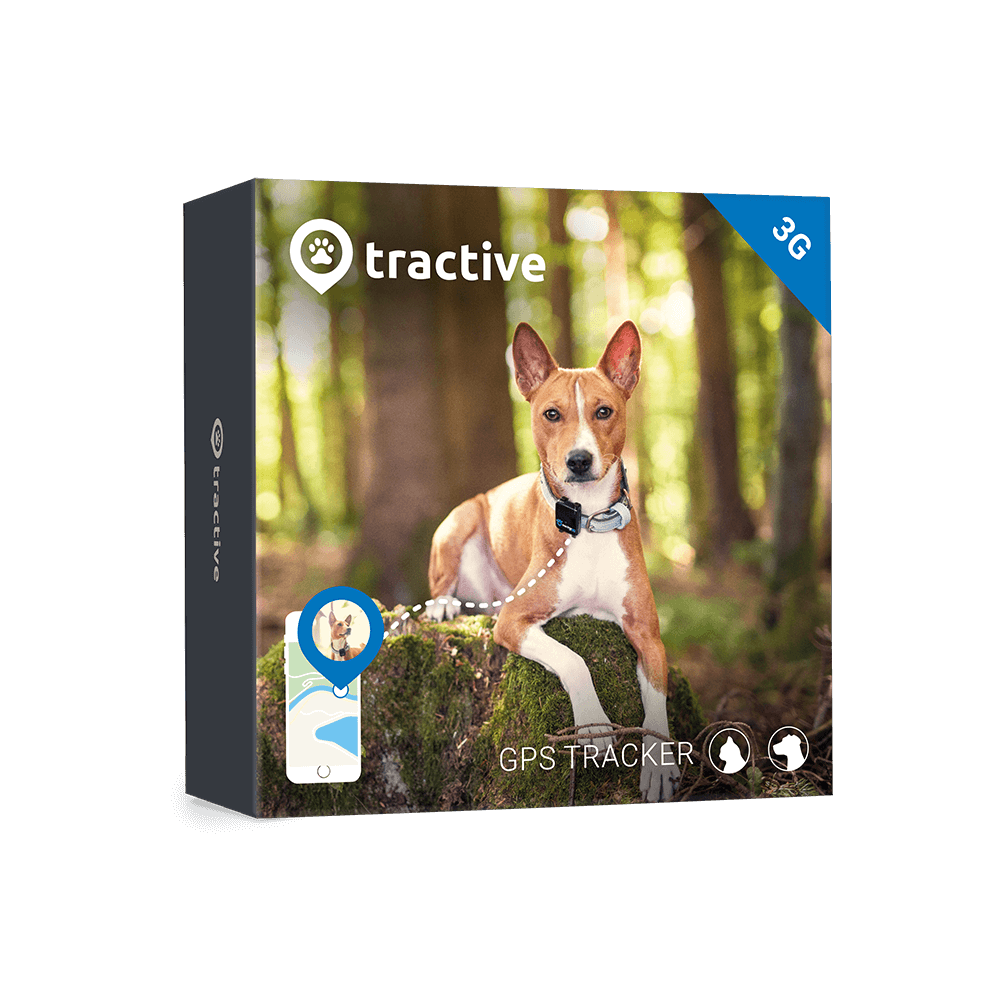 GPS Tracker for Dogs Tractive GPS DOG LTE Pet tracker