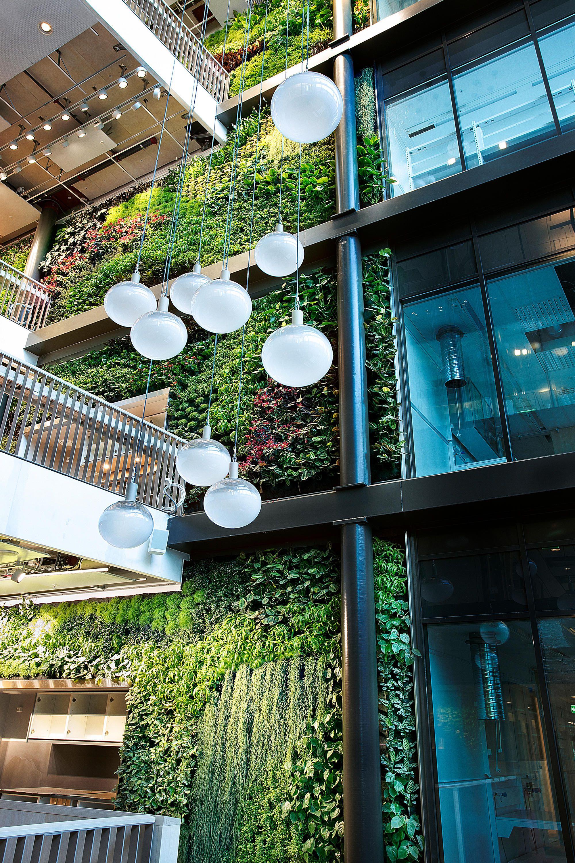 Indoor Vertical Garden Biomedicum Designer Living Green Walls From Greenworks All Informa Vertical Garden Indoor Vertical Garden Vertical Garden Design