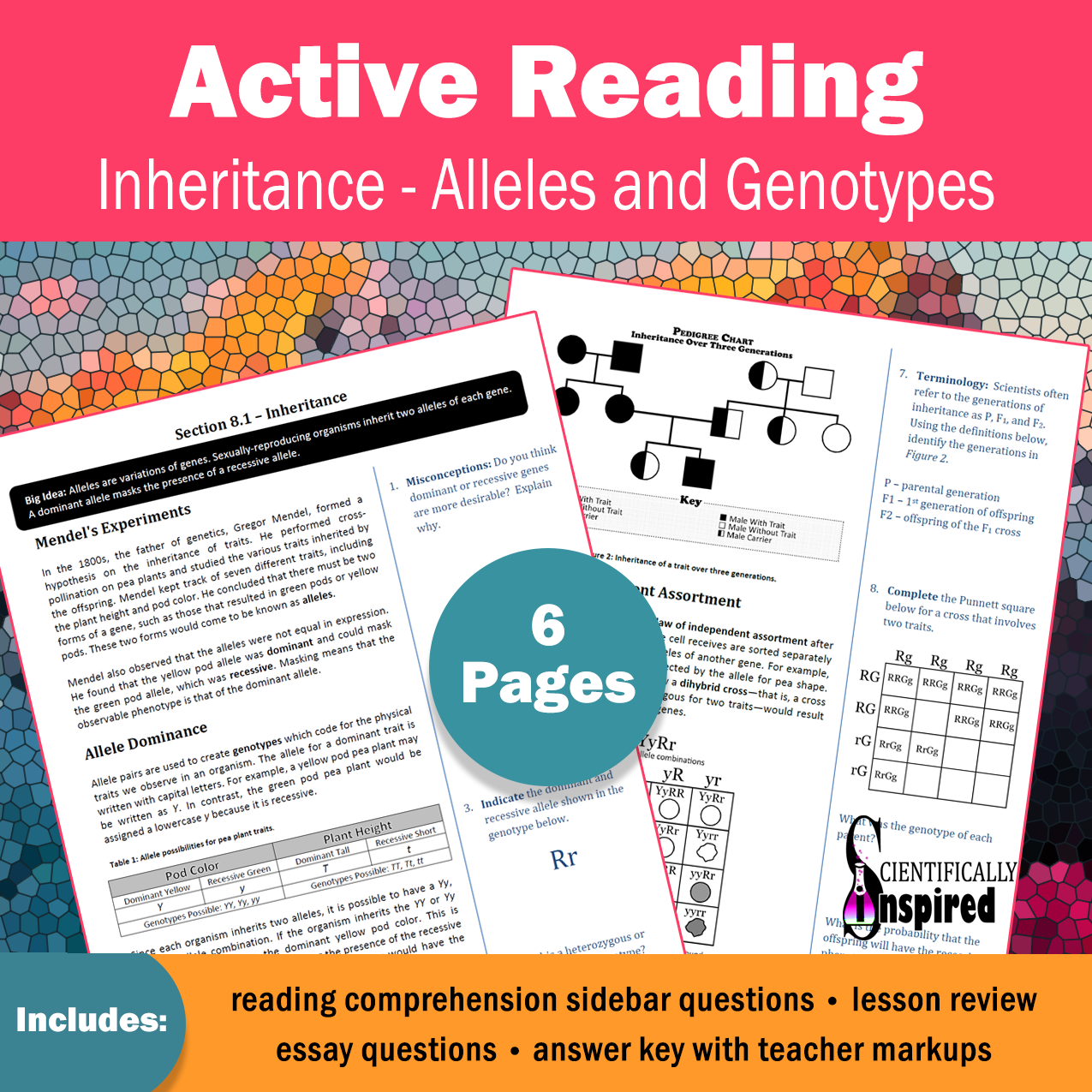 Active Reading Inheritance And Alleles