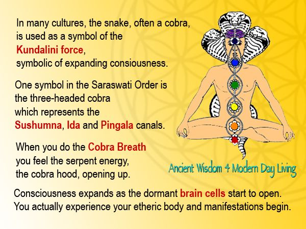 """Résultat de recherche d'images pour """"cobra breath"""""""
