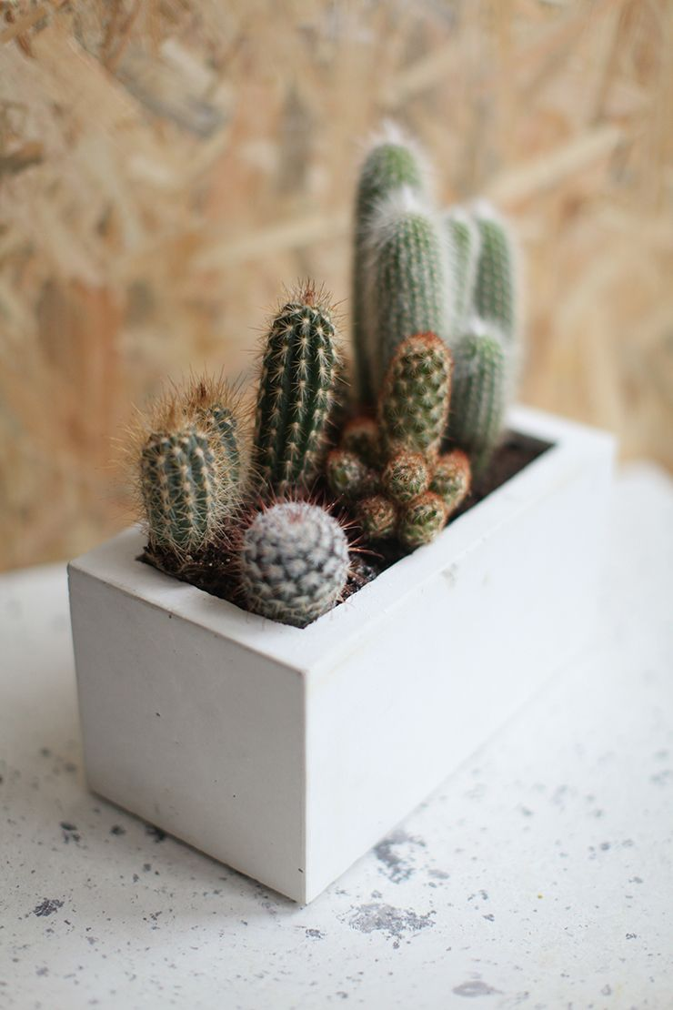 diy jardiniere beton to do someday diy diy box et. Black Bedroom Furniture Sets. Home Design Ideas