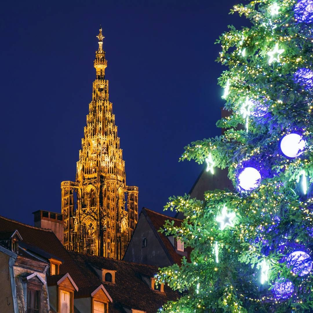 #Cathédrale de #Strasbourg ou #sapin de #Noël, que choisir ? 🎄  Les 2 bien sûr 😀  Nice view of the #cathedral behind the Strasbourg #Christmastree 💛