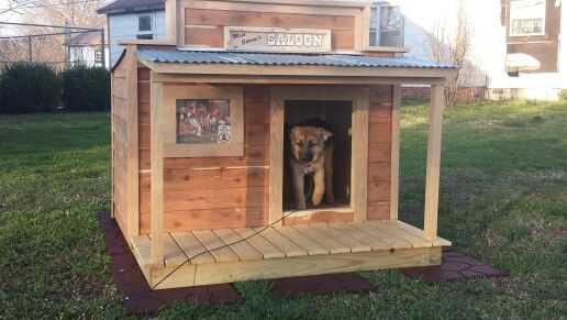 Stormi And Her Saloon Style Dog House Dog House Dog Houses