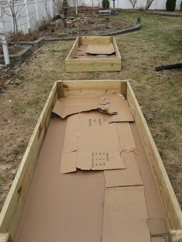 Preparing the bottom of a raised bed garden box. // good idea, but also add chicken wire underneath to keep out critters.