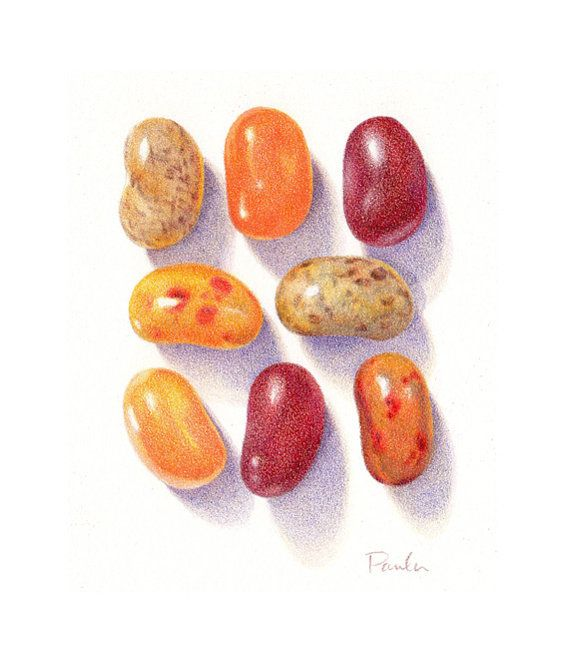 Realistic Colored Pencil Drawings Beans Print Of A Colored