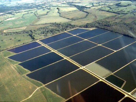 Auburn University Main Page Template Renewable Solar Solar Solar Energy