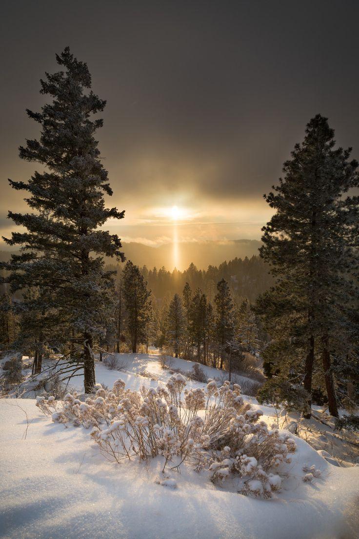Winter Landscape ..... by Heike D. #landscapepics