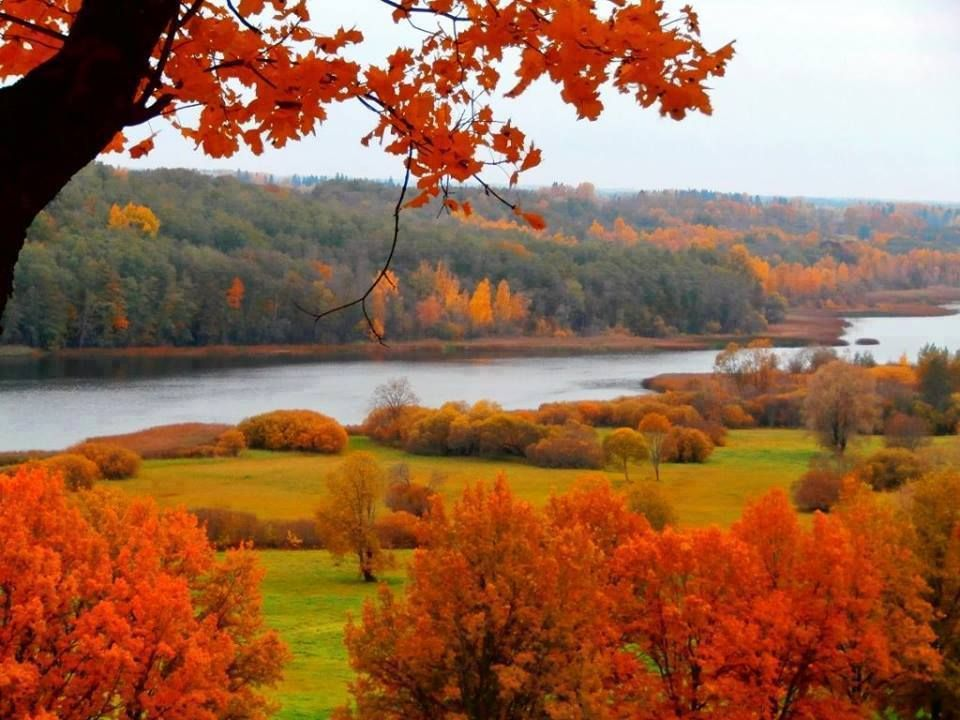 Estonia- Viljandi. Nordic autumn. in 2020 | England ...