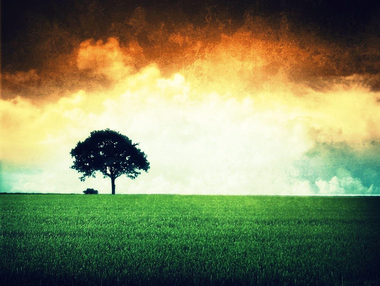 Indian Flag Landscape Indian Flag Colors Indian Flag Wallpaper Indian Flag