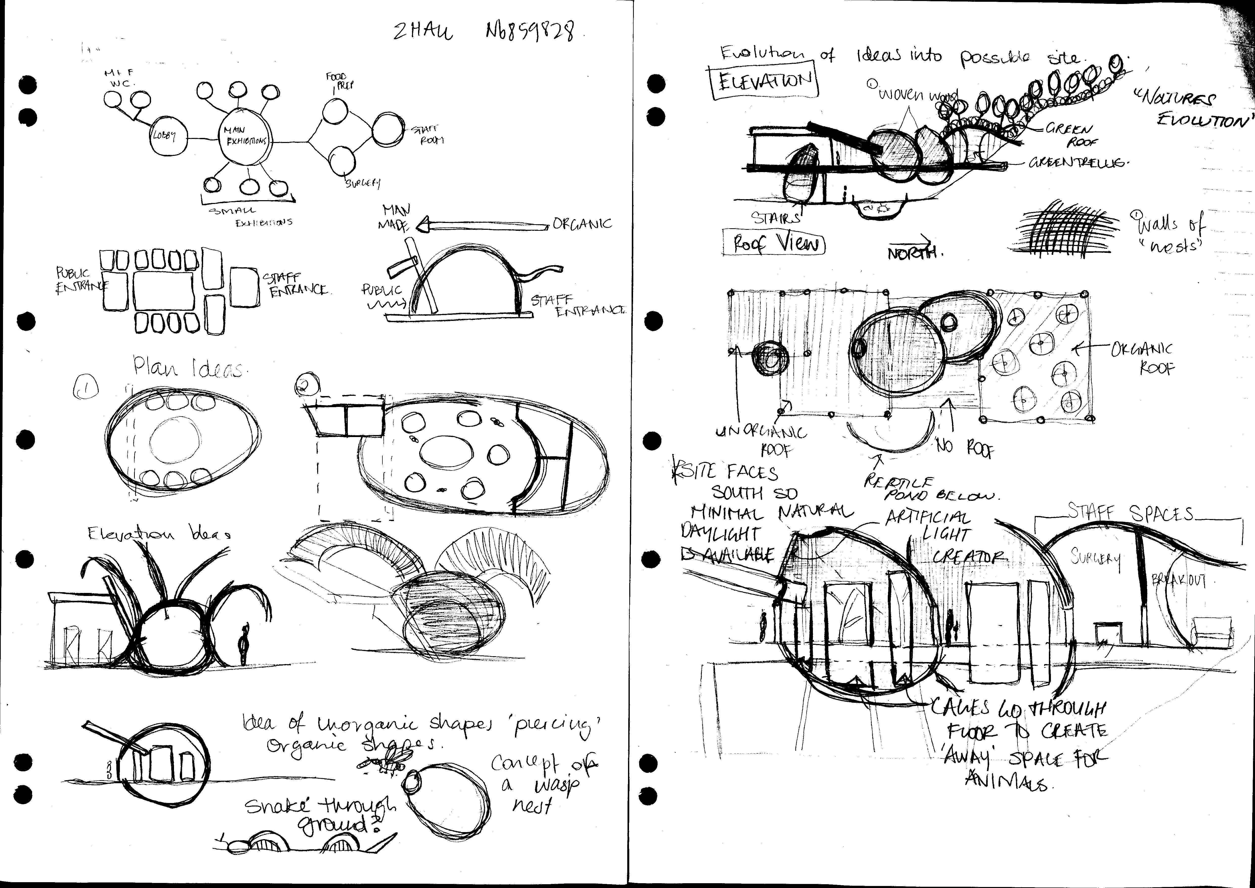 Organic Architecture Concepts