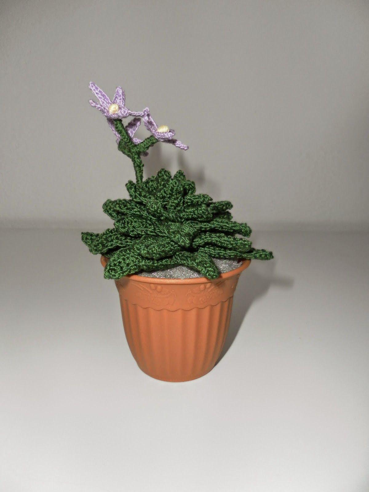 Il Blog Di Sam Cactus Flores De Color Lila Cactus De Ganchillo