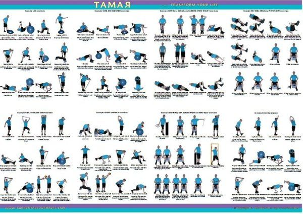 Free Workout Exercise Poster Home Workout Routines