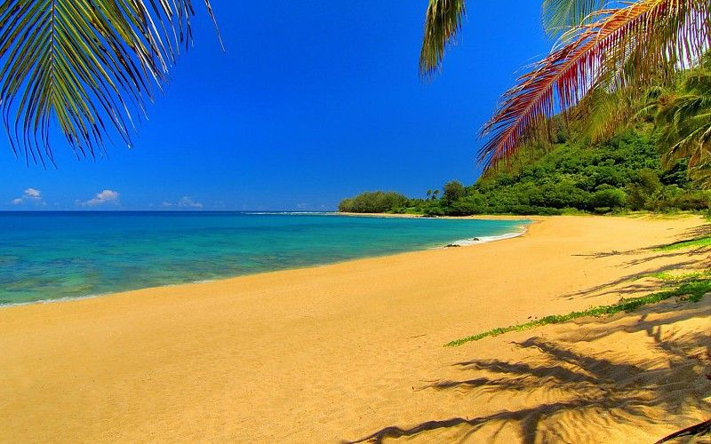 Resultado De Imagen Para Playa De Arena Dorada Summer Pictures Beach Pictures Kids Beach Pictures Poses