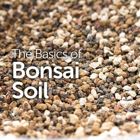 The Basics of Bonsai Soil - Basic Bonsai