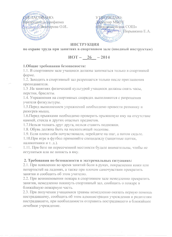 инструкция по охране труда директора