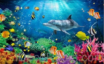 Dophin Coral Colorful Fish Under The Sea 00008 Floor Decals 3D Wallpaper Wall  Mural Stickers Print Part 63