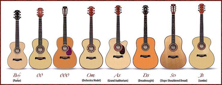 Graphic Body Size Comparison Gitaar Muziek