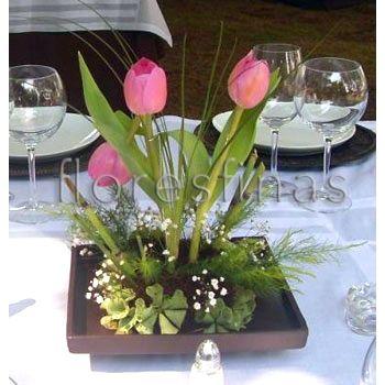 VLUU L100, M100   Samsung L100, M100 tulipanes y gerberas - arreglos de mesa