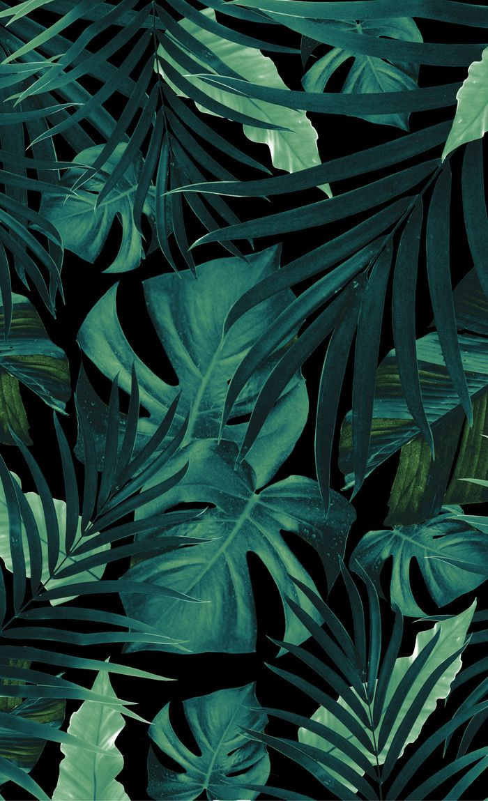 Tropical Jungle Night Leaves Pattern 1 Tropical Decor Art Society6 Window Curtains Tropical Wallpaper Plant Wallpaper Jungle Wallpaper Tropical/jungle wallpaper you will love tropical/jungle wallpaper with trendy palm trees, pineapples, jungle and safari animals, and bright tropical bird wallpaper. pinterest