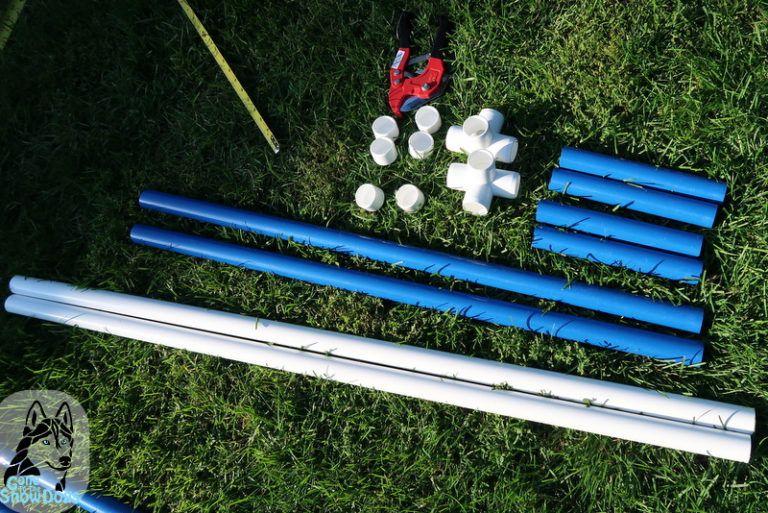 Diy build your own agility jumps for backyard fun dog