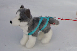 Arts and Crafts for your American Girl Doll: Dog sled harness for American Girl Doll #americangirldollcrafts