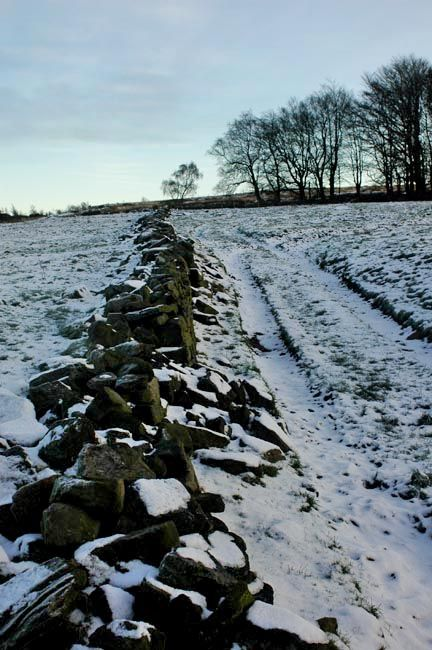 Old stone wall, Withnell