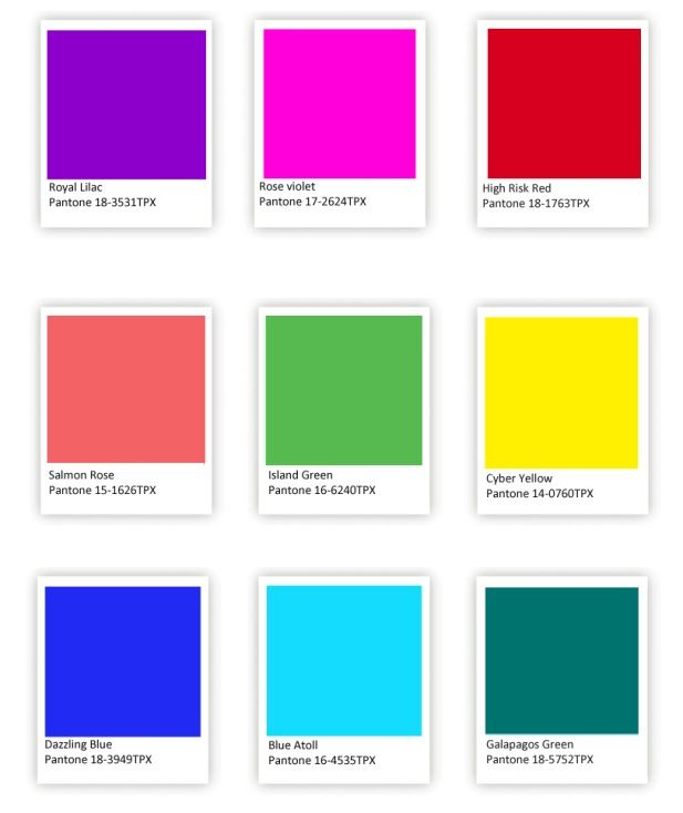 Tropical Burst Palettes Living Room Pinterest