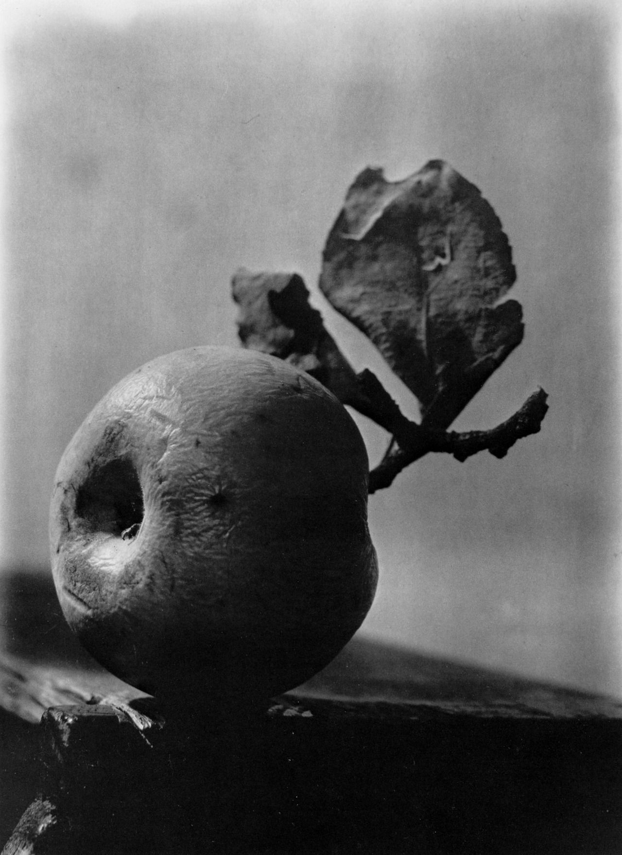 Black and white photography labrancaro josef sudek