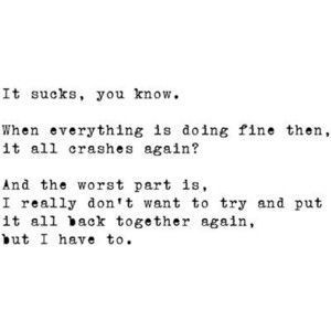 Whats The Point In Trying To Put It Back Together Quotes