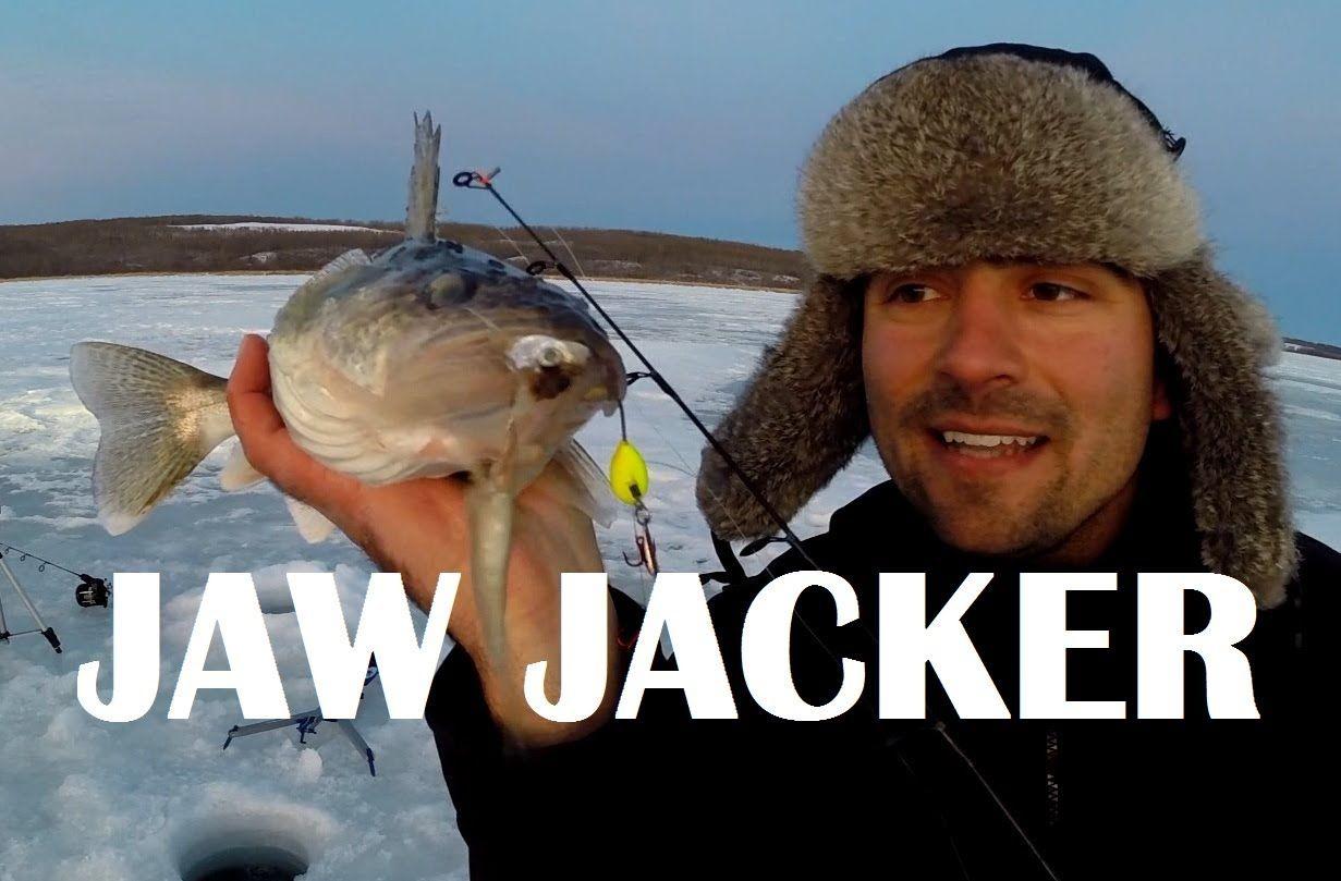How To Catch A Jawjacker Walleye Walleye Fishing Adventure Ice Fishing