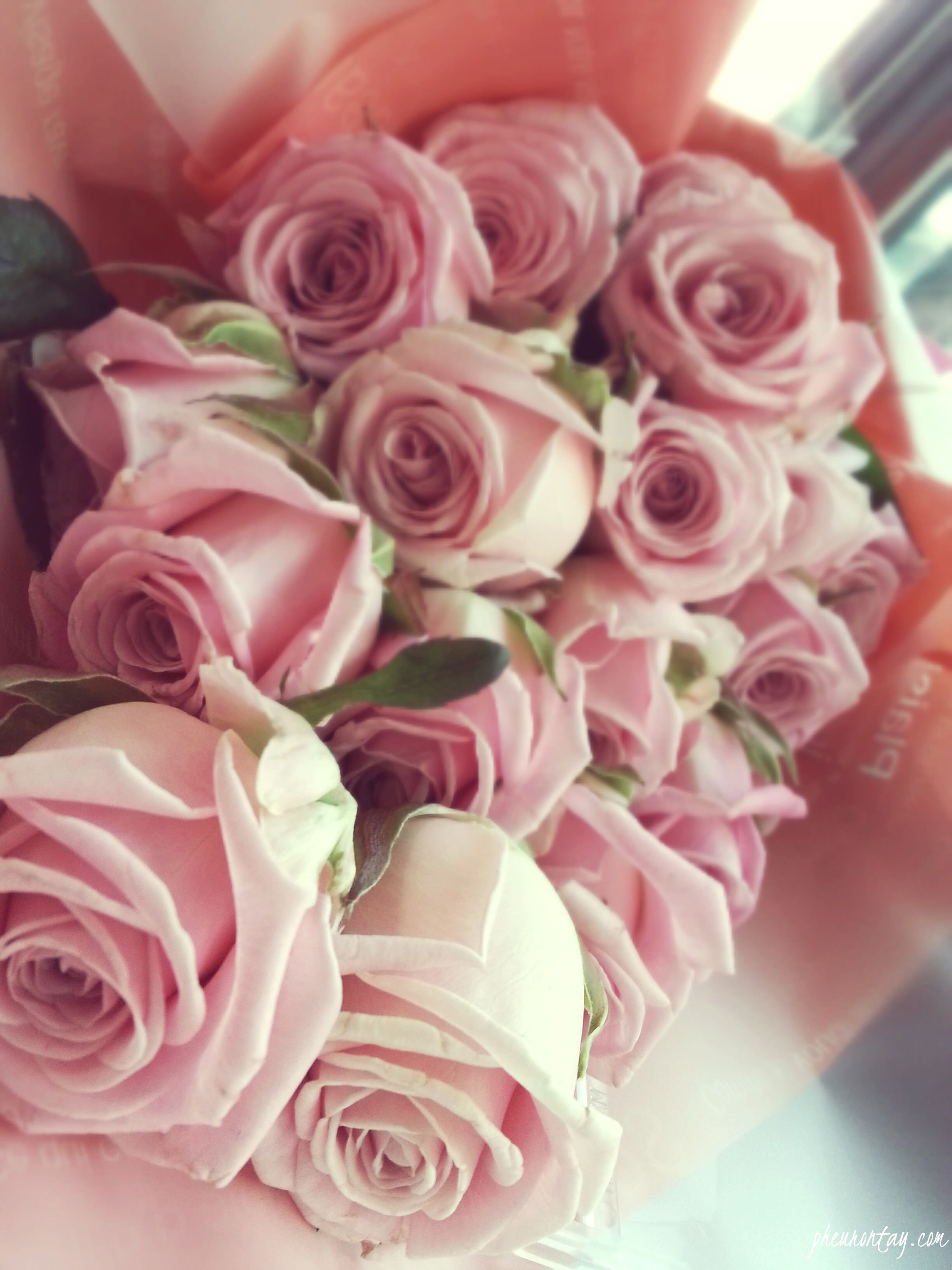 Happy Birthday Flowers Google Sk Happy Birthday Pinterest