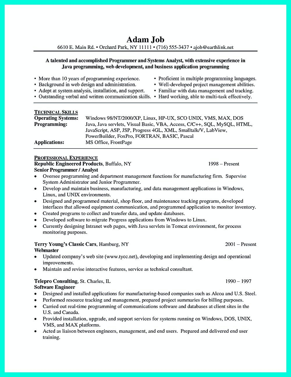 Computer programmer resume has some paragraphs that