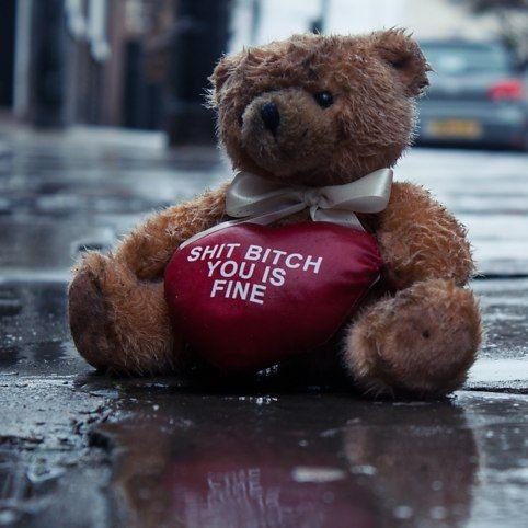 Shit Bitch Bear - buy at Firebox.com