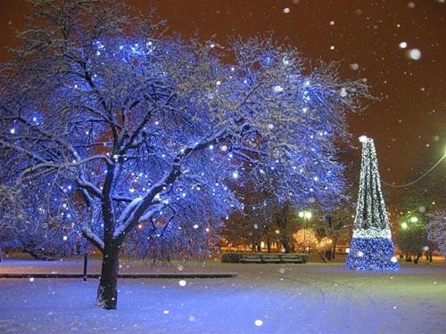 Snow and christmas lights twas the night before christmas